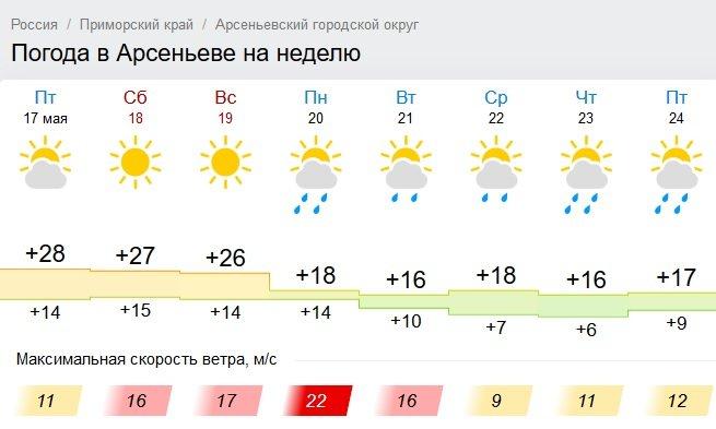 На приморье погода сегодня