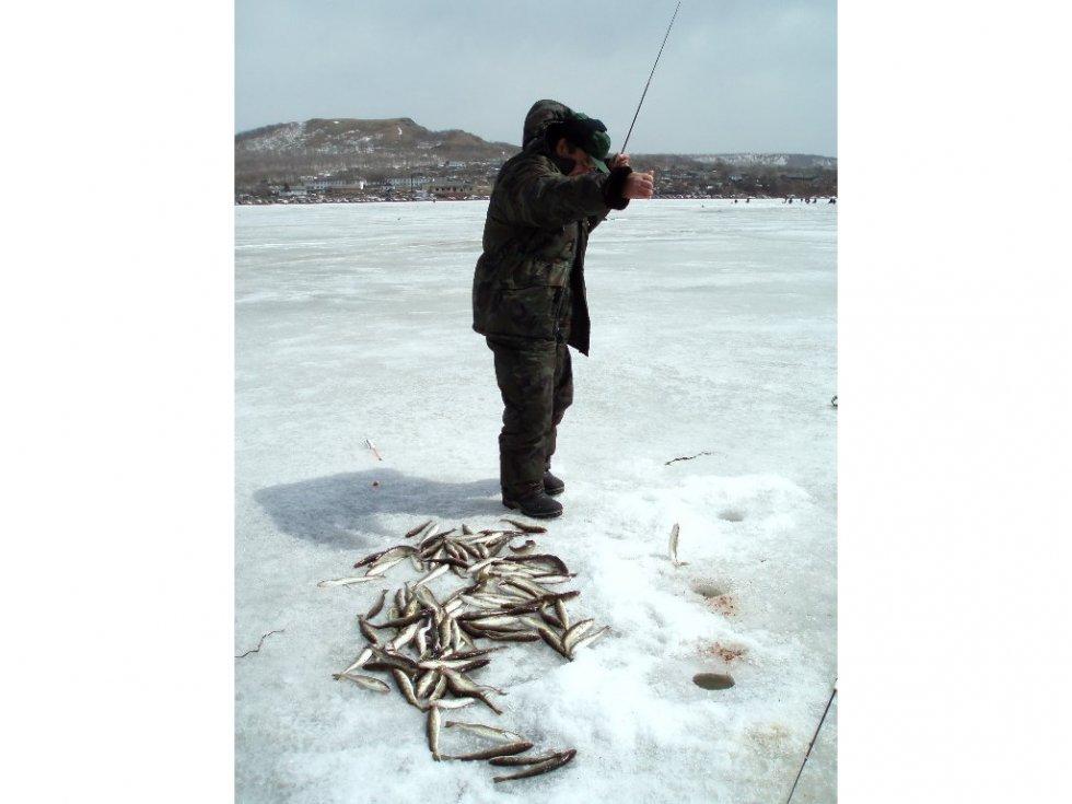 где и какую ловить рыбу во владивостоке