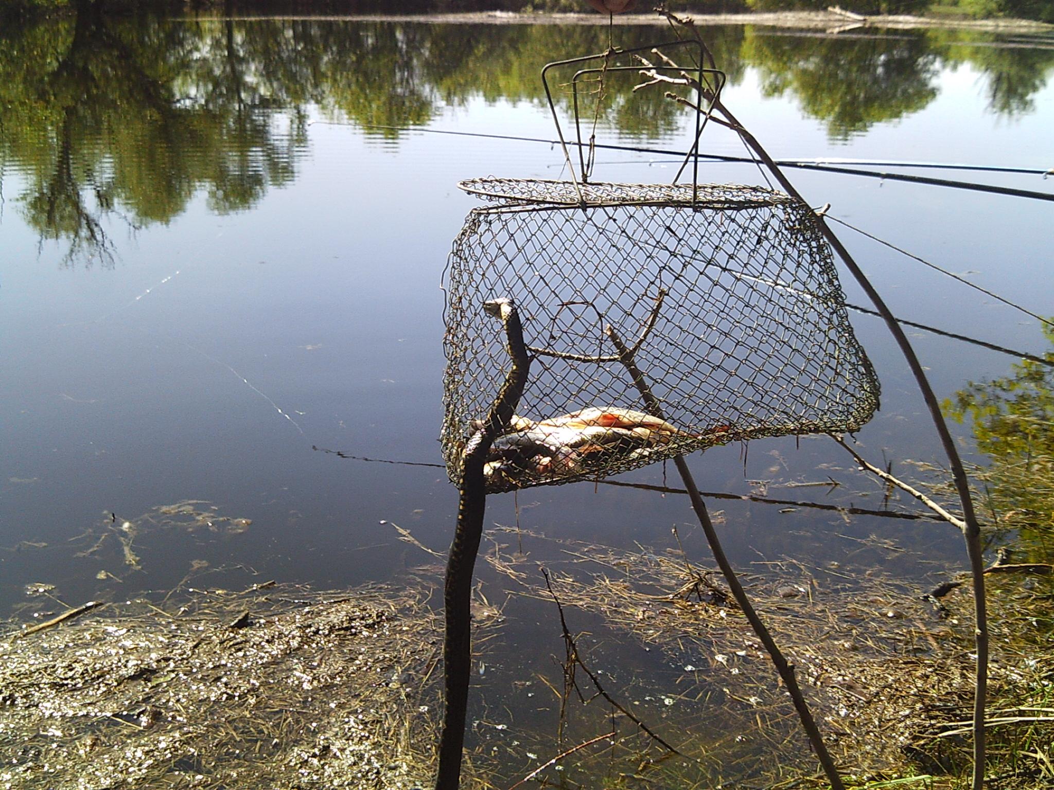 садок для рыбы при ловле с лодки