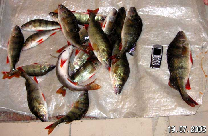 форум что касается рыбалке черкасс