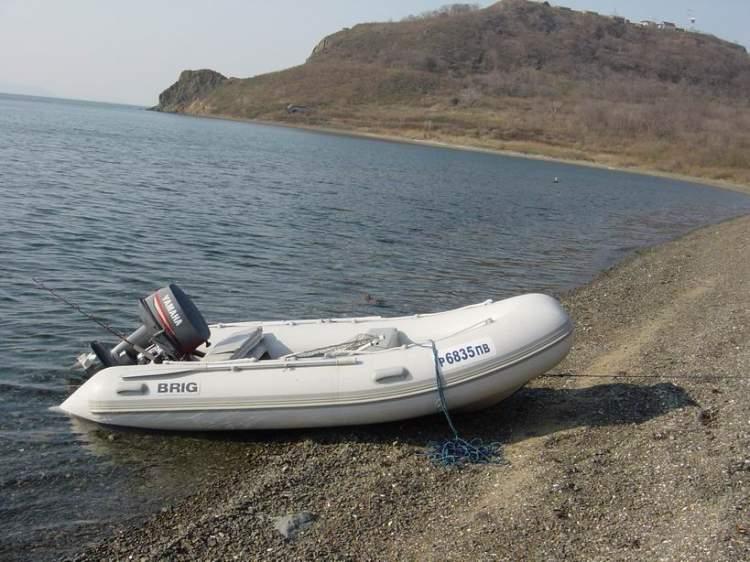 лодки риб бриг 360 цена купить