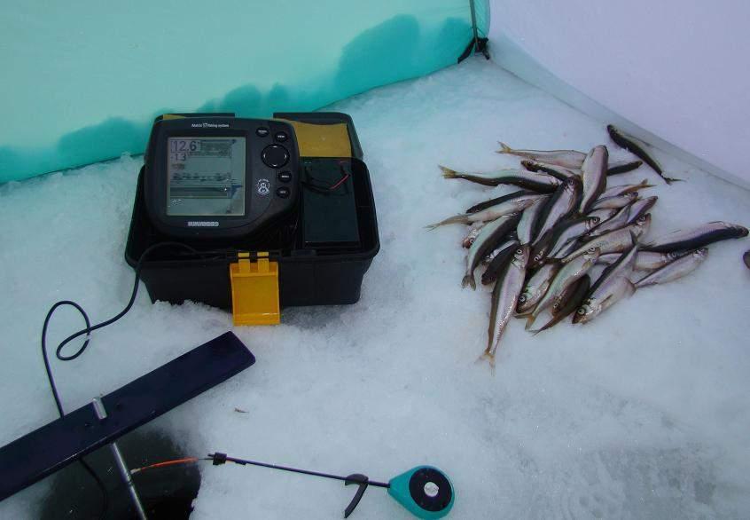 Эхолоты для рыбалки своими руками 29