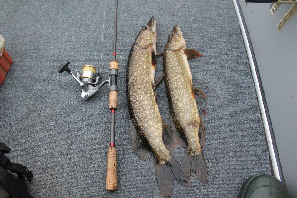начало сезона рыбалки на щуку