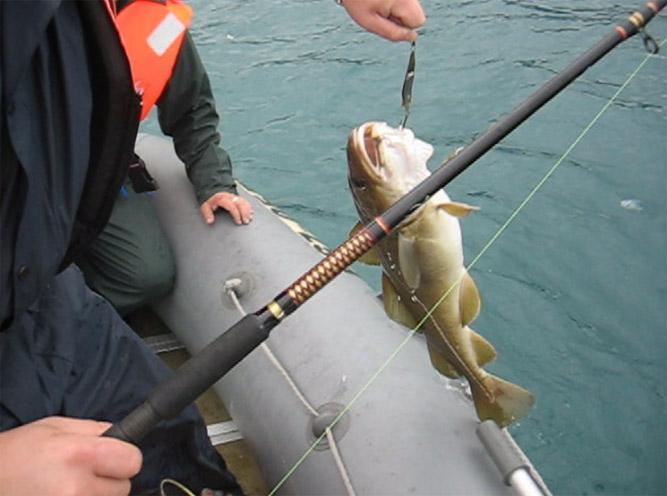 рыбалка с лодки сейчас