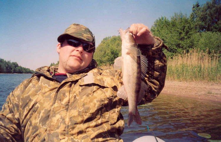 запреты на рыбную ловлю на ладоге