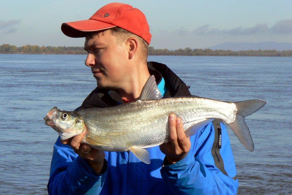 Рыбалка на реке Амур