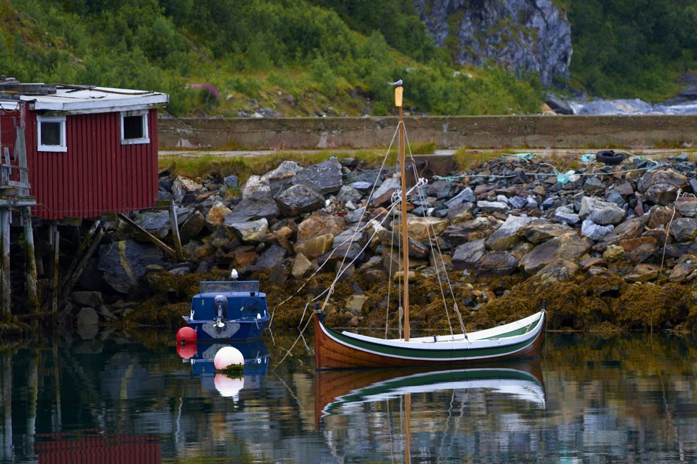 легко обучаемая норвежские лодки фото вам